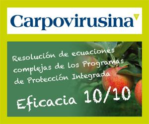 CARPOVIRUSINA banner 300x250px