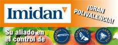IMIDAN banner 234x90px-1